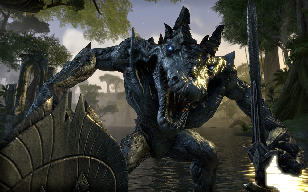 teso first person combat