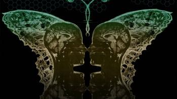nevermind-biofeedback