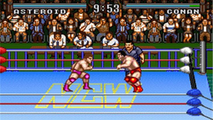 Natsume Championship Wrestling - 1994.